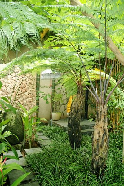 Villa ramadewa bali bali landscape company for Bali landscape design