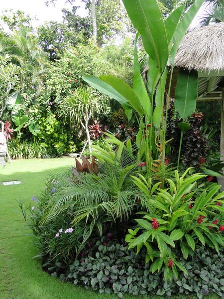 bali garden design - photo #36