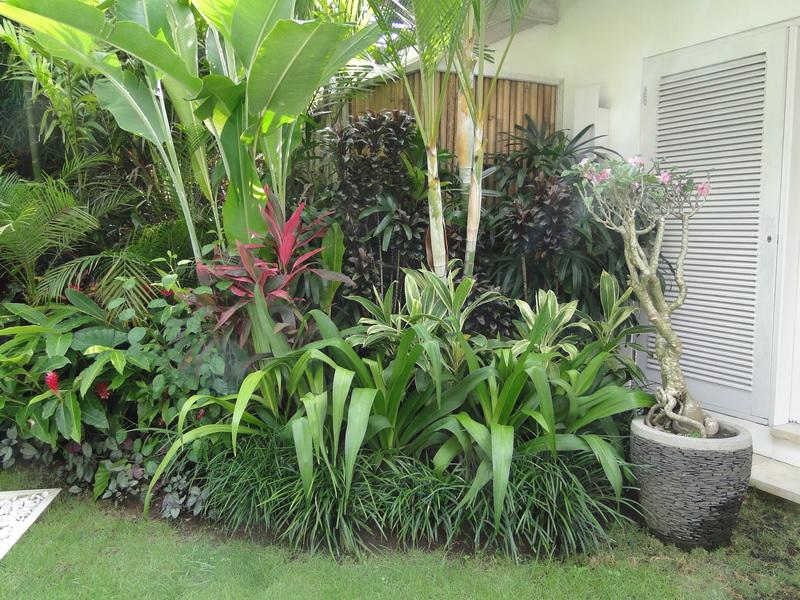 Elang villa bali bali landscape company for Garden design company